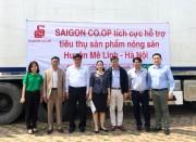 Saigon Co.op lên kế hoạch giải cứu củ cải, su hào với số lượng lớn