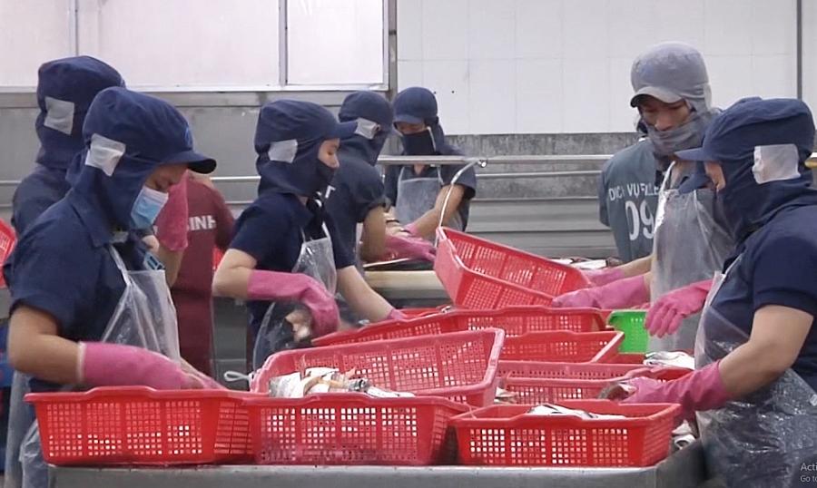 """Xuất khẩu thủy sản tăng nhờ """"đòn bẩy"""" của các FTA"""