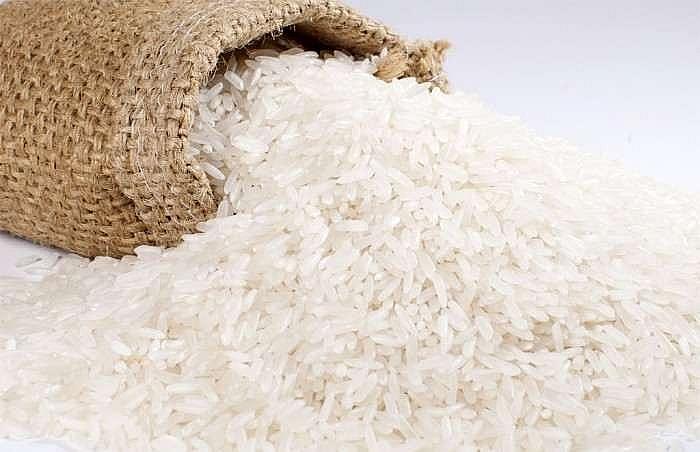 Giá lúa gạo hôm nay 31/3: Giá xuất khẩu bất ngờ sụt giảm mạnh 15 USD/tấn