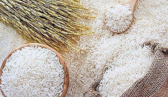 Giá lúa gạo hôm nay 1/4: Giá lúa tiếp tục giảm mạnh, giá gạo đi ngang