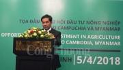 Cơ hội đầu tư vào các ngành nông nghiệp tại Campuchia và Myanmar
