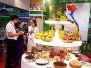 Tiếp cận thị trường Trung Quốc qua kênh CIIE 2018