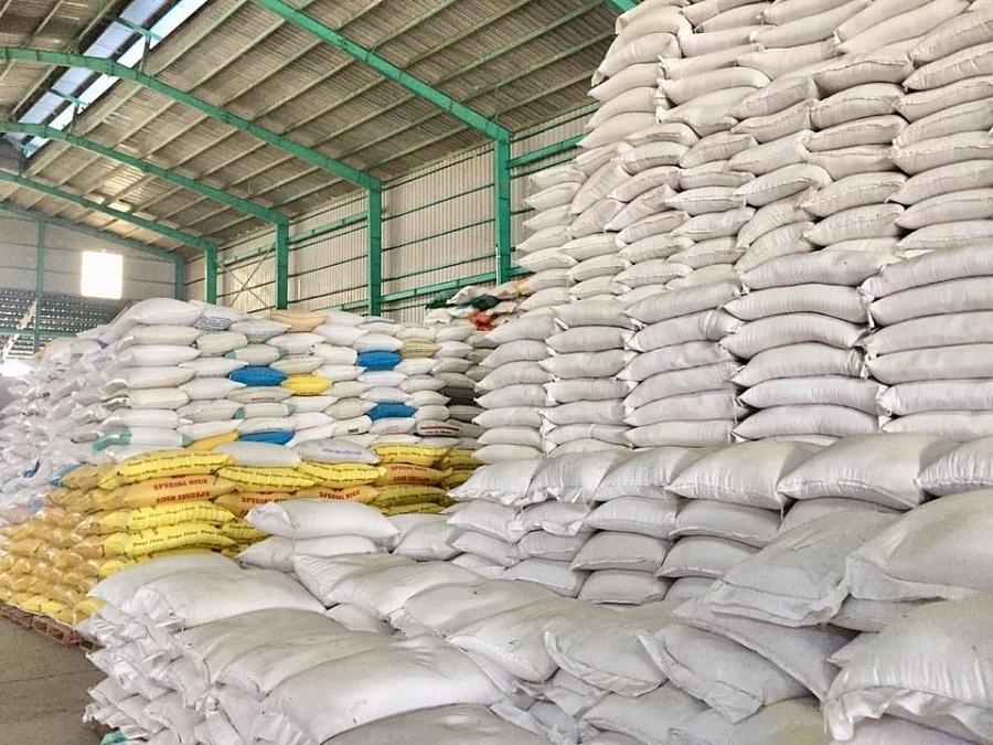 Giá lúa gạo hôm nay 16/4: Giá lúa tăng mạnh 500 đồng, giá gạo chững