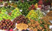Triển lãm chuyên ngành sản xuất và chế biến rau, hoa, quả tại Việt Nam