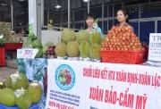 Phát triển hợp tác xã Việt Nam- Cần sự đổi mới và tăng cường liên kết