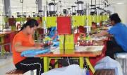 Quy tắc, thủ tục phức tạp khiến doanh nghiệp nhỏ khó tận dụng FTA