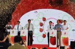 Saigon Co.op cam kết tiêu thụ 400 tấn vải thiều cho tỉnh Bắc Giang và Hải Dương