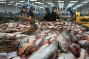 9 tháng đầu năm 2017, xuất khẩu thủy sản và gạo Tiền Giang bứt phá