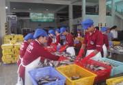 TP. Hồ Chí Minh và tỉnh Bình Thuận ký kết hợp tác tiêu thụ nông, thủy sản an toàn