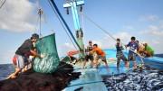 Indonesia mong muốn thúc đẩy hợp tác trong lĩnh vực thủy sản với Việt Nam