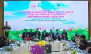 Đẩy mạnh phát triển logistics để tăng sức cạnh tranh của nông sản Việt