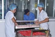 Châu Phi, Trung Đông - Thị trường tiềm năng cho xuất khẩu thực phẩm Việt