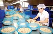 Kim ngạch xuất khẩu 6 tháng của Đồng Nai tăng trên 11%