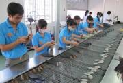 TP. Hồ Chí Minh: Tìm hướng gỡ khó cho ngành da giày