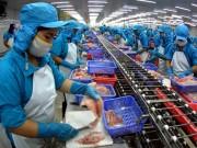 TP. Cần Thơ phấn đấu xuất khẩu 1,67 tỷ USD trong năm 2017