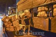 Chợ hoa lớn nhất Sài Gòn nhộn nhịp ngày 20/10