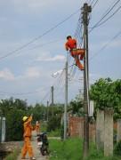 Đồng Nai đầu tư 238 tỷ đồng xây dựng lưới điện nông thôn