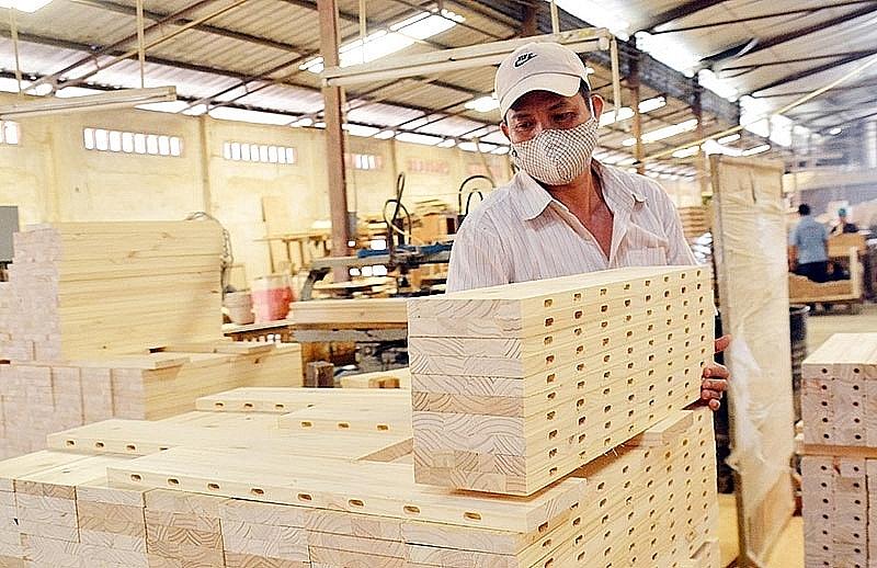 Nhận thức về gỗ hợp pháp Việt Nam trong ngành cao su còn hạn chế