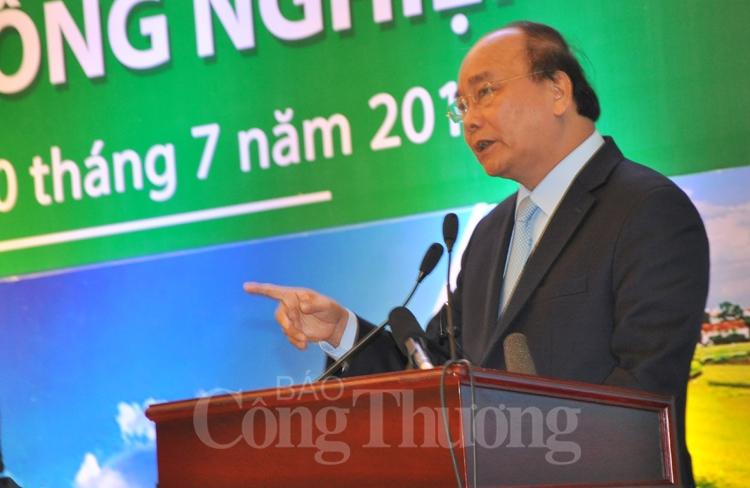 dua san pham nong nghiep viet nam len vi tri hang dau the gioi