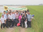 Học kinh nghiệm làm lúa tại Thái Lan