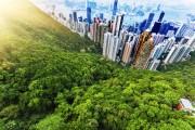 Du lịch Hong Kong với vé máy bay giá rẻ