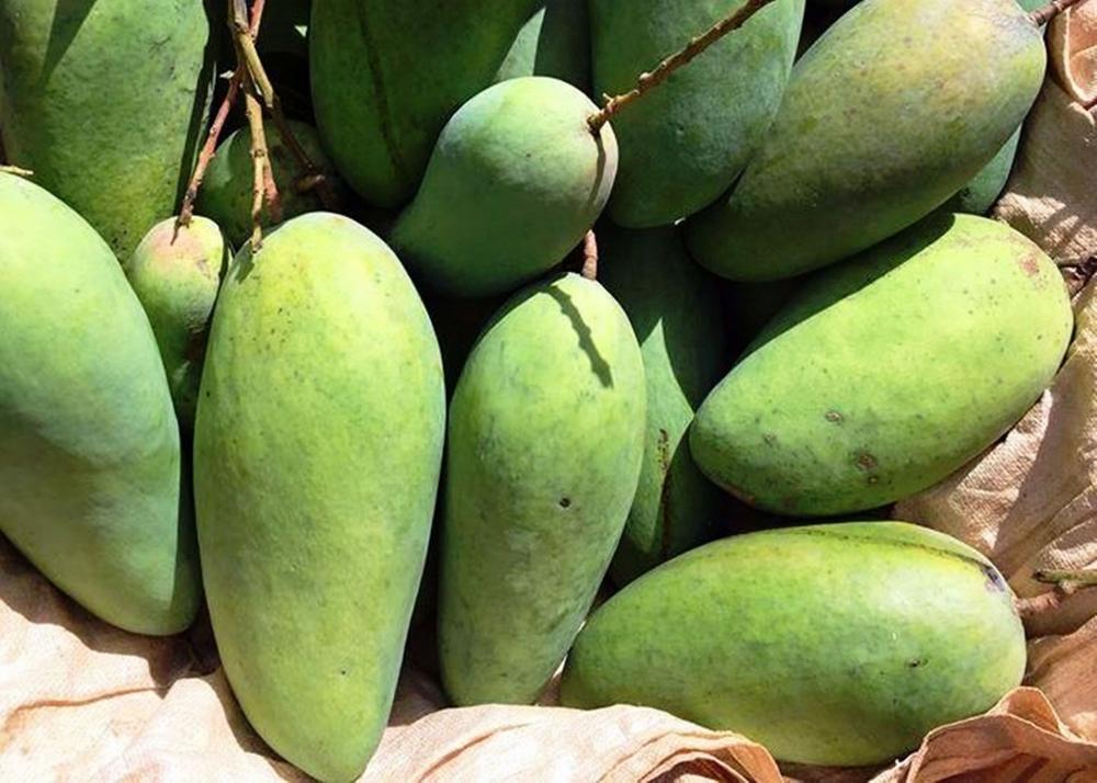 Giá thực phẩm ngày 20/5: Giá rau củ quả giữ xu hướng đi ngang, giá trái cây giảm mạnh