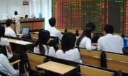 Thị trường chứng khoán tăng trưởng mạnh mẽ