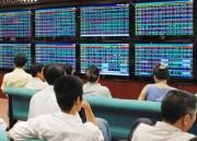 Thị trường dừng ở mốc 800 điểm