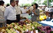 Hoa Kỳ chính thức nhập khẩu trái vú sữa của Việt Nam