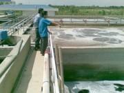 TP. Hồ Chí Minh kêu gọi DN Pháp đầu tư vào lĩnh vực cấp thoát nước, xử lý môi trường