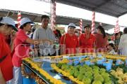 Cần Thơ: Khai mạc Ngày hội du lịch sinh thái Phong Điền
