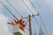 Tây Ninh cải tạo dây trần lưới điện