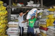 Định hướng liên kết phát triển bền vững chuỗi giá trị lúa gạo