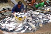 Sắp diễn ra Hội chợ triển lãm quốc tế chuyên ngành thủy sản tại Cần Thơ