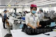 Nâng cao sức cạnh tranh, thúc đẩy hợp tác xuất khẩu ngành dệt may