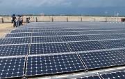 Đóng điện nhà máy điện năng lượng mặt trời lớn nhất Việt Nam