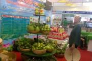 CầnThơ: Kết nối giao thương nông sản sạch an toàn
