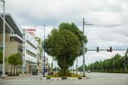 Philips đóng góp ý tưởng xây dựng thành phố thông minh Bình Dương