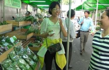 tp ho chi minh thanh lap 40 doanh nghiep moi trong linh vuc nong lam thuy san