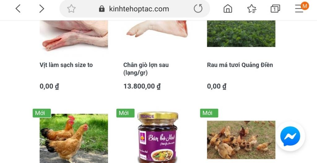 thua thien hue ho tro tieu thu san pham nong nghiep qua san thuong mai dien tu