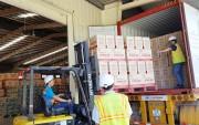 Bánh Trung thu Việt tiếp tục được xuất khẩu sang Mỹ