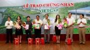 Cấp Chứng nhận VietGAP cho 40 trang trại chăn nuôi heo của C.P. Việt Nam