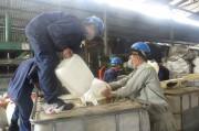 TP. Hồ Chí Minh: Tiêu hủy số lượng lớn rượu không rõ nguồn gốc