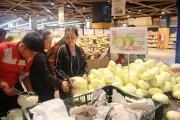 Lotte giúp nông dân Lâm Đồng tiêu thụ bắp cải