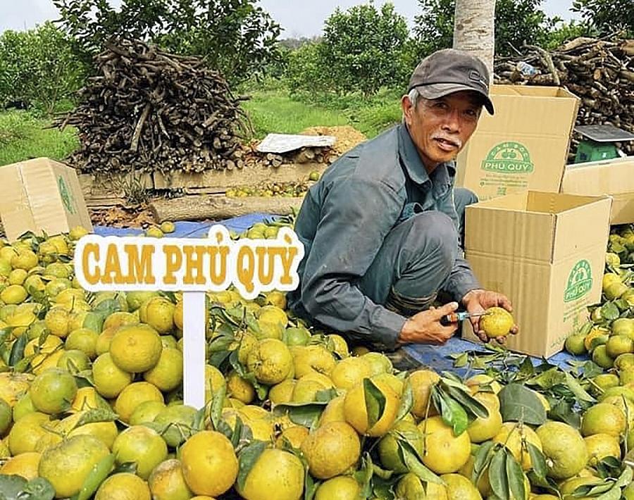 Nghệ An: Chính quyền và nhà nông cùng lên mạng bán hàng