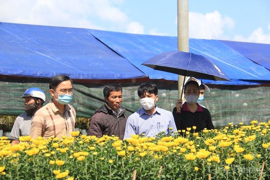 Gia Lai: Nỗ lực khơi thông đầu ra cho nông sản và hoa Tết
