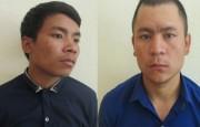 Quảng Nam- Bắt tạm giam 2 bị can trộm 150 gốc sâm Ngọc Linh