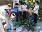 Quảng Nam: Phụ nữ phố cổ Hội An chung tay giải cứu dưa hấu