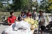 4 ngày, sinh viên Quảng Nam giải cứu 4,7 tấn dưa hấu