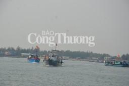 Quảng Ngãi: Cứu kịp thời 31 ngư dân trên tàu câu mực bị chìm
